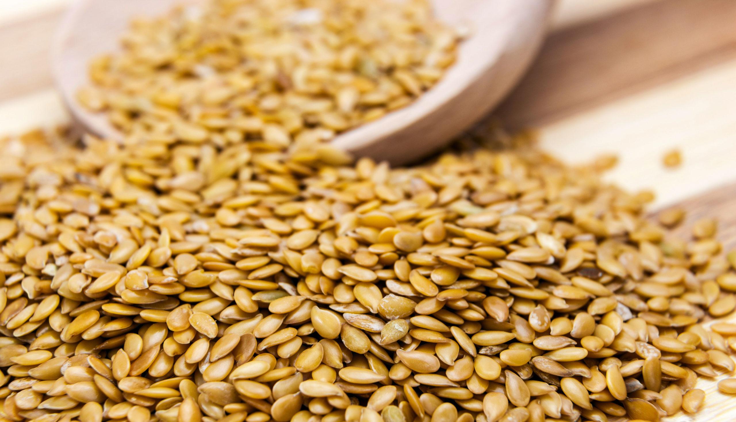 Lin Lov contient entre 50 et 100% de grains de lin bio français